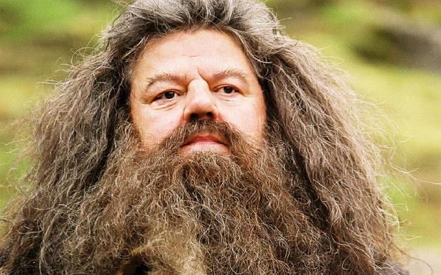 male facial hair