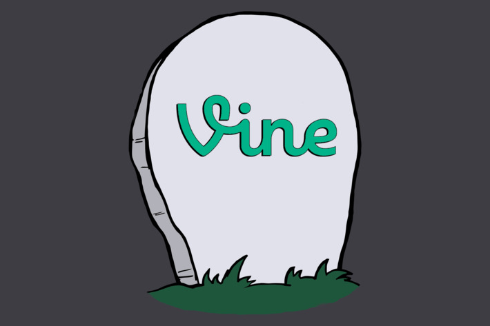 end-of-vine