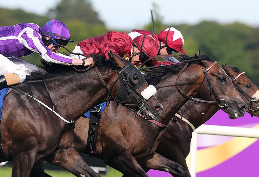 bulmers-live-at-leopardstown
