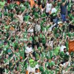 FBL-EURO-2016-MATCH9-IRL-SWE-FANS